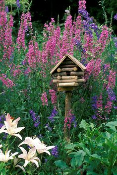 Log birdhouse with blooming lythrum, lilies, and larkspur, Missouri