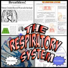 This Respiratory System unit is packed with activities, diagrams, foldable, worksheets, respiratory system task cards and more on the respiratory system.