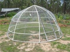 How To Build A Chook Dome