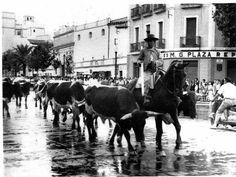 Córdoba toros en los tejares