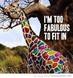 I most certainly am!!