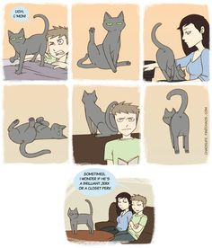 Admit it, cats are kind of pervy…...