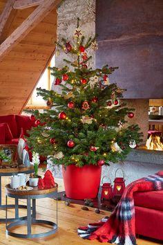 """www/botanic.com/noel/deco - Inspiration """"Maison de famille"""" - Plaid - Réf. 249402"""
