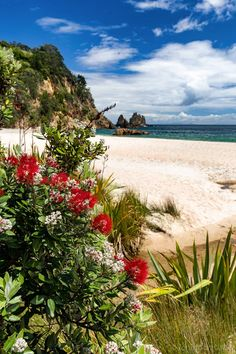 Fotka: Here's an out-of-season reminder of the coming summer months for anyone feeling a bit blue about the blustery weather down here right now. And for those who aren't, I hope you enjoy this Coromandel scene anyway :)  Jonathan