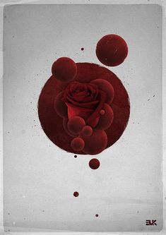 Roses | A stunning contemporary graphic artwork by Maxime Quoilin for the online art collective Evoke.