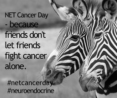 NET Cancer Day. Because friends don't let friends fight cancer alone. www.netcancerday.org