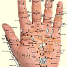 Accupuncture is the best. Helped so much following major accident.