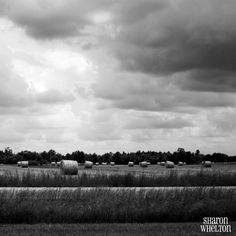Hay Bales & Cloudy Skies - Large Black and White Photo - Monochromatic Decor - Square Print - Free Shipping Every Day on Etsy, $20.95