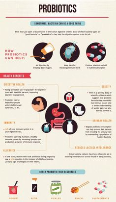 Learn what probiotics stains for weight loss you should be eating and the best supplements. Probiotics are scientifically proven to help with weight loss. infographics 3 Best Probiotics Strains for Weight Loss Best Supplements, Nutritional Supplements, Probiotic Supplements, Weight Loss Plans, Best Weight Loss, Gut Health, Health Tips, Eyes Health, Health And Nutrition