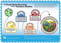 Farmers markets have become a critical ingredient in local economies, food systems & communities. Not only are they an economic boost to local farms & businesses, they can also strengthen community ties & promote healthy eating. Food Policy, Farm Business, Usda Food, Food System, Healthy Eating Recipes, Organic Recipes, Farmers Market, Marketing, Chain Reaction