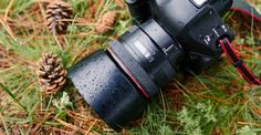How To Get Tack Sharp Images And Say Goodbye To Blurry Photos For Good - Page 2 of 2 - Modern Lens Magazine Camera Tips, Camera Hacks, Photography Tutorials, Photography Tips, Sharp Photo, Saying Goodbye, Best Photographers, Photo Tips, Tack