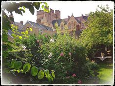 Secret garden with New College in the background.