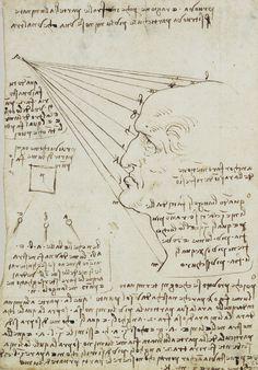 Leonardo da Vinci - A study of the fall of light on a face c.1488