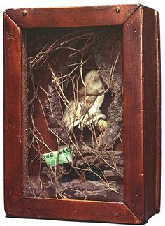 Joseph Cornell Untitled (Owl Habitat), 1946, box construction, h: 12 x w: 8 x d: 4.5 in / h: 30.48 x w: 20.32 x d: 11.43 cm