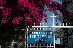 """Jesus then went down to Capernaum, a town of Galilee. He taught them on the sabbath, and they were astonished at his teaching because he spoke with authority.  In the synagogue there was a man with the spirit of an unclean demon, and he cried out in a loud voice, """"Ha! What have you to do with us, Jesus of Nazareth? Have you come to destroy us? I know who you are—the Holy One of God!""""(Luke 4:31-34)  And news of him spread everywhere in the surrounding region. -Luke 4:37(NABR)"""