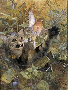 Cat and Chaffinch Bruno Liljefors 1885 Private Collection cat in art Albert Bierstadt, Augustin Lesage, Chaffinch, August Sander, Oil Painting Reproductions, Wildlife Art, Prehistoric Wildlife, Cat Drawing, Canvas Art Prints