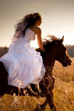 Google Image Result for http://www.platinumweddingsaltinkum.com/userimages/horse%2520wedding.jpg