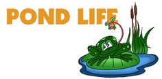Free K-12 Pond Life Lesson Plans from Lots of Lessons
