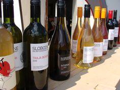 Slobodné vinárstvo Zemianske Sady - GAVALIER 2017 ... SLOBODNE VINARSTVO . Majer Zemianske Sady ...................... www.vinopredaj.sk .......................  #slobodne #slobodnevinarstvo #zemianskesady #slovenskevino #slovakwine #orange #orangewines #oranzista #slovakwines #inmedio #wineshop #delishop #happy #krasnyden #milujemevino #mameradivino #ochutnaj #taste #tasteslovakia #travel #dicover #objav #cestuj