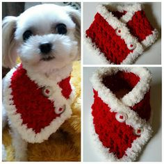 Crocheted Small Dog Scarf Puppy scarf fits most S by QuiltNCrochet