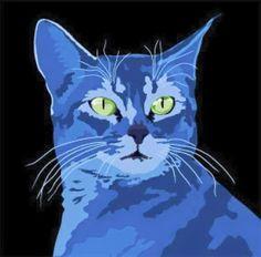 EQUILÍBRIO: Ode ao gato, Pablo Neruda