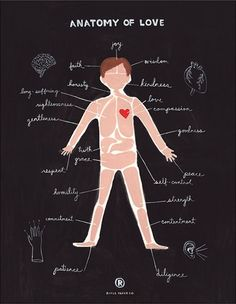 """Anatomía del amor... Cada miembro de la pareja aporta a la relación su """"mapa del amor"""" que usualmente se construye desde la infancia. http://www.glits.mx/blog/namaste/kamasutra"""