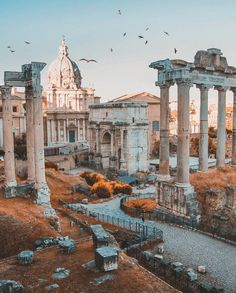 "43.5 mil Me gusta, 353 comentarios - Living Europe (@living_europe) en Instagram: ""Eternal beauty ~ Rome, Italy Photo: @rick_avenali Congrats! 🚩 Have you ever visited this…"""