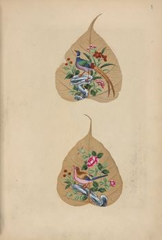 """The Miriam and Ira D. Wallach Division of Art, Prints and Photographs: Art & Architecture Collection, The New York Public Library. """"Four butterflies with eggs, larvae, and moths."""" The New York Public Library Digital Collections. 1850. http://digitalcollections.nypl.org/items/510d47e3-0f2c-a3d9-e040-e00a18064a99"""
