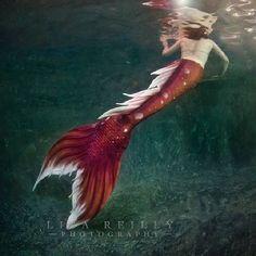 The beautiful Mermaid Ginger. Aka The Koi Queen! #mermaidginger #koiqueen #mermaids #finfolk