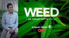 NORML Guest Column On CNN's Frontpage | NORML Blog, Marijuana Law Reform