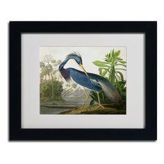 Louisiana Heron by John James Audubon Matted Framed Painting Print