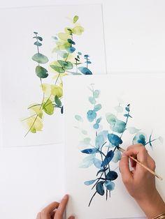 Peindre de l'eucalyptus à l'aquarelle
