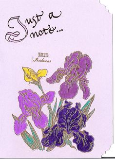 Just a Notecard of Iris by inkieannie on Etsy