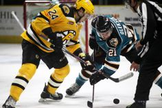 Worcester Sharks forward Travis Oleksuk takes a face-off (March 14, 2014).