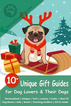 Dog Gift Guides For