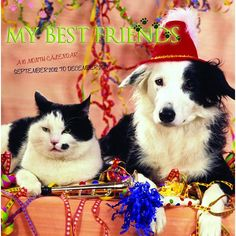 My Best Friends Wall Calendar: Who says cats and dogs don't get along? This 2013 calendar features a dozen images of cats and dogs getting along like best friends.  http://www.calendars.com/Assorted-Dogs/My-Best-Friends-2013-Wall-Calendar-/prod201300001832/?categoryId=cat00188=cat00188