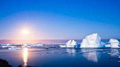 #Antarctica