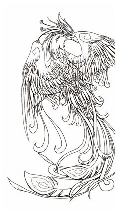 This is moreso the sort of artwork I'd like to get back into. Again, friend's phoenix tattoo. I dub it 'Feliz da Phoenix'. Tattoo Sketch, 1 Tattoo, Tattoo Drawings, Future Tattoos, New Tattoos, Tatoos, Tatouage Delta, Colouring Pages, Coloring Books