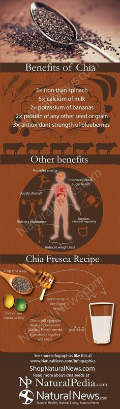 Numerous health benefits of nutrient dense Chia Seeds - Infographic: Benefits of Chia
