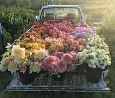 Truck full of flowers #pottedplants #farm #pretty #sunlight #colors #flowers #truck #amazing #photooftheday #followback
