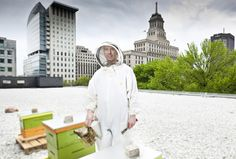 Urban Rooftop Beekeepers - Geoff Fitzgerald Photography