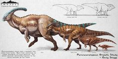 Elder Parasaurolophus fan concept for The Isle. (Not meant to be scientifically accurate / exists within the game's sci fi universe) The Isle Parasaurolophus Growth Fan Concept Prehistoric Wildlife, Prehistoric Creatures, Dinosaur Drawing, Dinosaur Art, Creature Drawings, Animal Drawings, Fantasy Creatures, Mythical Creatures, Jurrassic Park