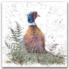 Wrendale Designs by Hannah Dale Watercolor Animals, Watercolor Paintings, Watercolours, Wrendale Designs, Wildlife Art, Pheasant, Chalk Art, Christmas Art, Bird Art