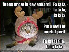 yea christmas songs - Animals Singing Christmas Songs