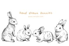 Easter Bunnies, Doodle Clipart by swiejko on Creative Market