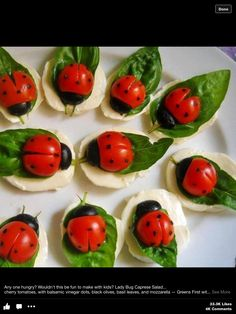 Cherry tomatoes, black olives, oil dots, spinach leaf on mozzarella