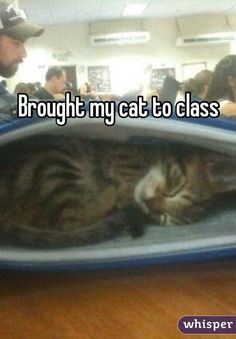 """""""Brought my cat to class"""""""
