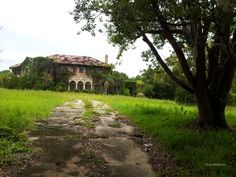 Cameo Cottage Designs: An Awesome Abandoned Estate Property Discovery
