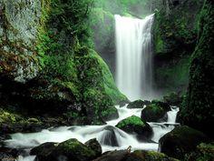 Falls Creek Falls Gifford Pinchot National Park, WA