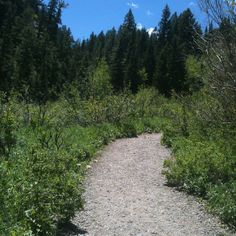 Donut Falls Hike - Utah (easy little hike to waterfall)